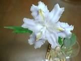 image/manganji-2006-04-12T08:50:26-1.jpg